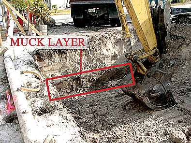 "Joe Angeleri - This is the layer of ""muck"" that makes building unstable. It was removed, and fill dirt was brought in and compacted."