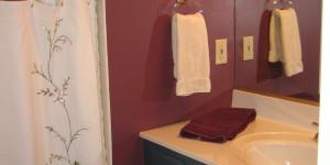 Joe Angeleri - Historic 1790 Greek Revival restoration -Master Bath